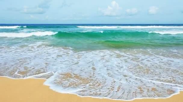 vlny na pobřeží tropické moře