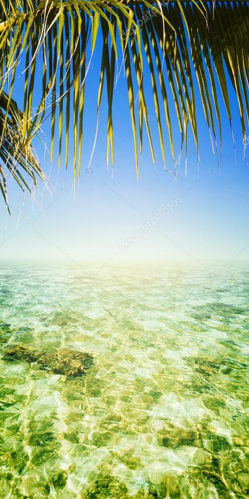Tropical sea. Vertical panoramic composition.