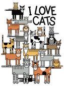 Fotografie I Love Cats