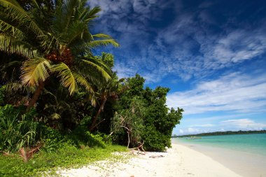 Havelock Island blue sky with white clouds, Andaman Islands, India