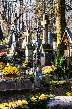 Old cemetery Na Peksowym Brzyzku in Zakopane in Poland stock vector