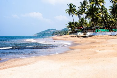 Exiting Anjuna beach panorama on low tide with white wet sand and green coconut palms, Goa, India
