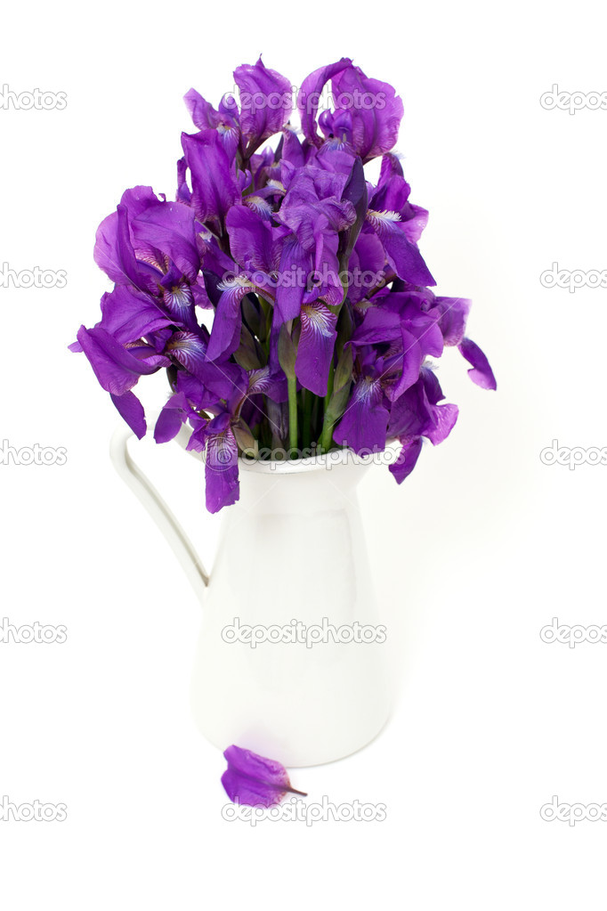 Mazzo Di Fiori Iris.Bunch Of Iris Flowers Stock Photo C Dianazh 28572675