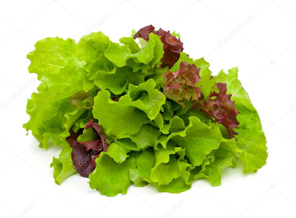 fresh green and red lettuce isolated on white background
