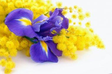 beauty bouquet of flowers