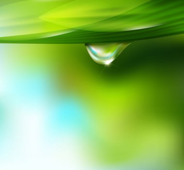 Vector drop of dew on a background of sky and greenery