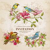 Fotografia set di vintage fiori e uccelli - illustrazione disegnata a mano