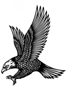 Attacking eagle illustration