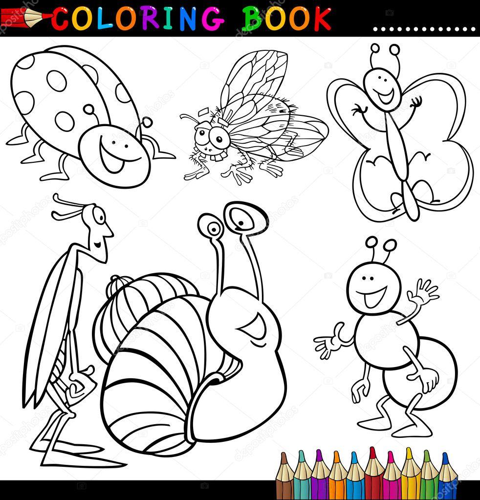 Insectos Y Bichos Para Colorear Libro O Página Archivo Imágenes