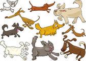 Fotografie Cartoon spielerisch laufen Hunde Satz