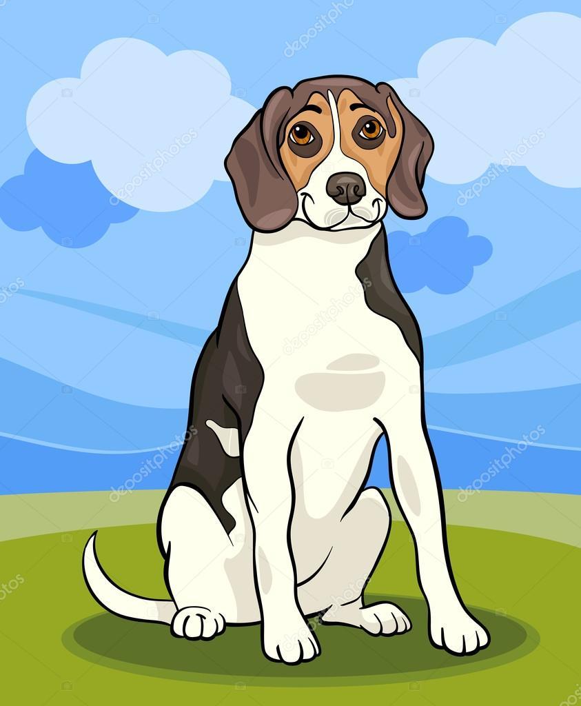 Illustrazione di cartone animato cane beagle — vettoriali