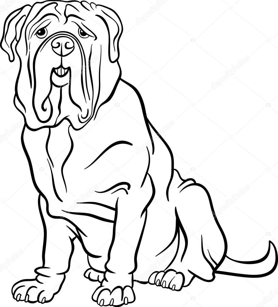 dibujos animados de perro Mastín Napolitano para colorear — Vector ...