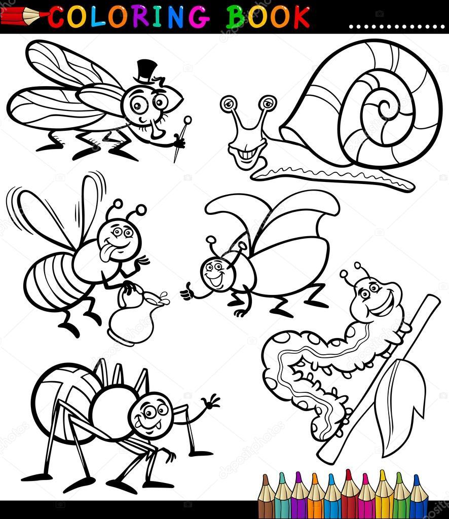Insectos Y Bichos Para Colorear Libro Archivo Imágenes Vectoriales