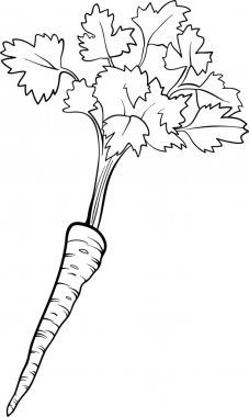 parsley vegetable cartoon for coloring book
