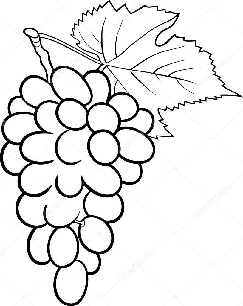 Boyama Kitabı Için üzüm şekil Stok Vektör Izakowski 25951651