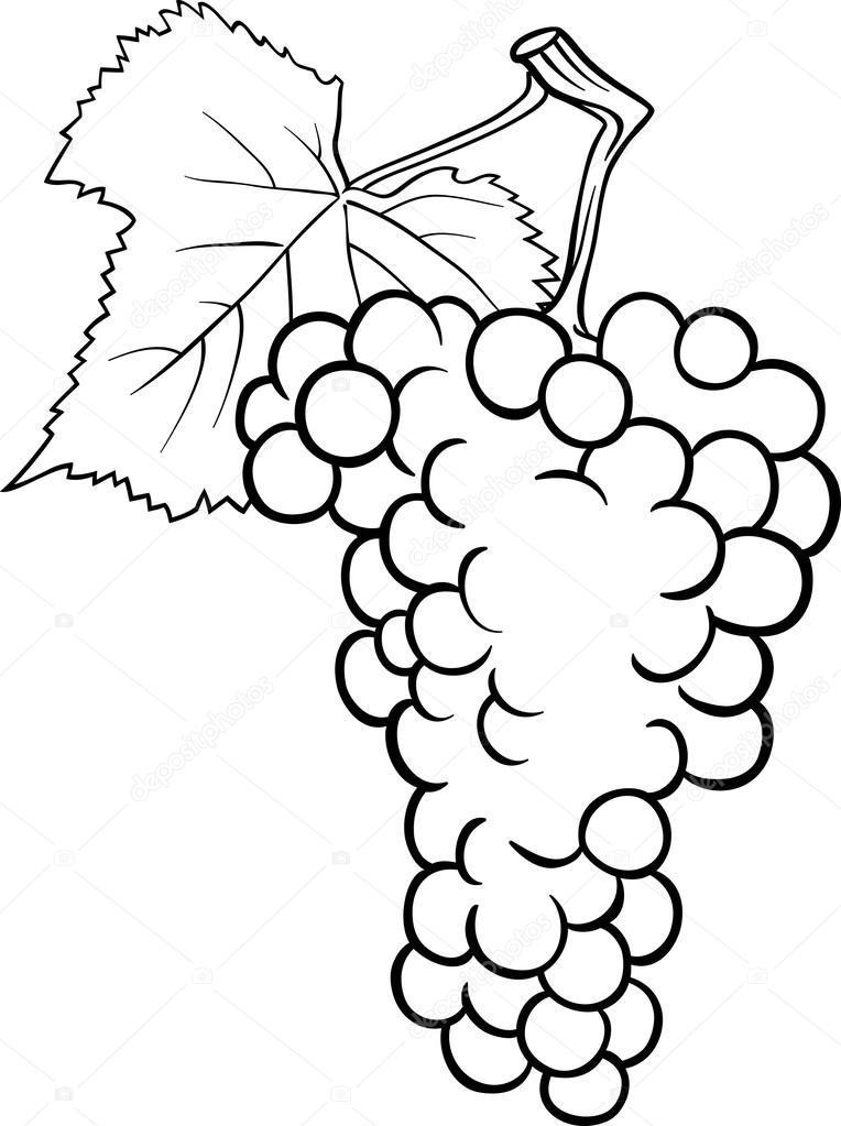 Ilustración De Uvas Para Colorear Libro Archivo Imágenes