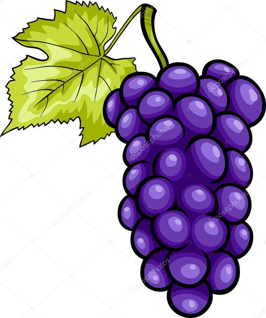 uvas azul fruta de dibujos animados ilustración — Archivo Imágenes ...