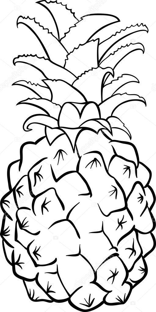 Fruta Piña Para Colorear Fruta De Piña Para Colorear Libro