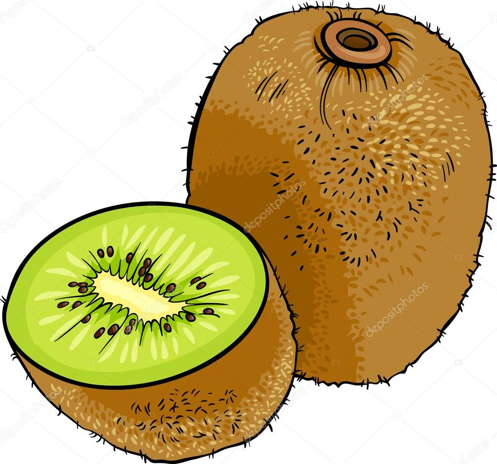 Kiwi fruit cartoon illustration — image vectorielle