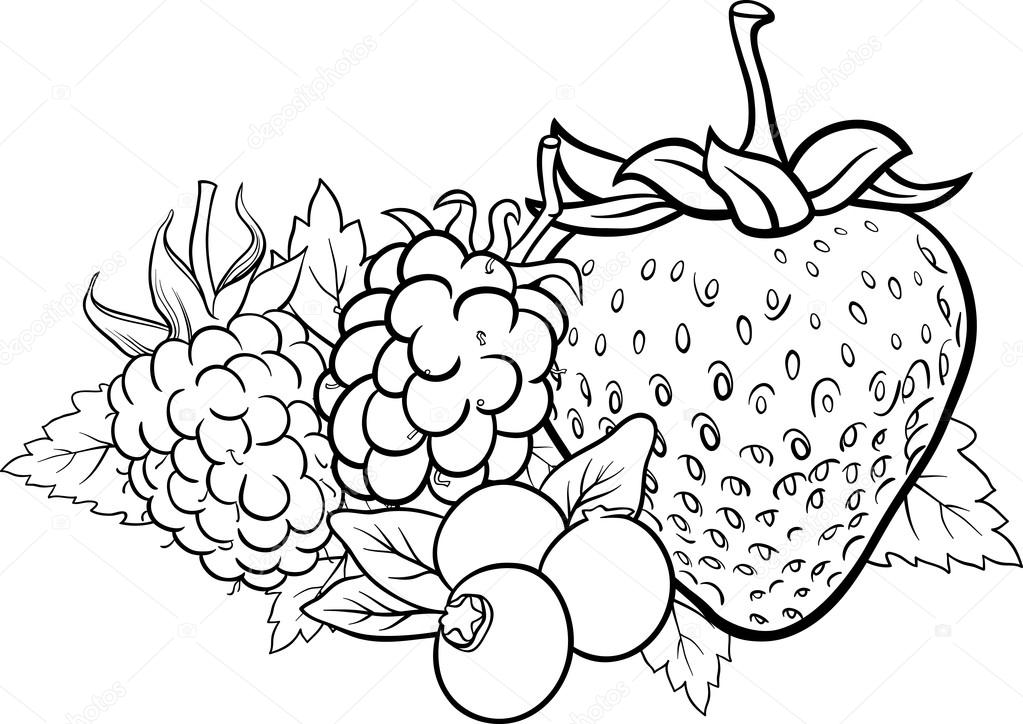 Cahier Coloriage Fruits.Illustration De Fruits De Baies Pour Le Cahier De Coloriage Image