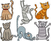 Lustige Katzen setzen Cartoon-Illustration