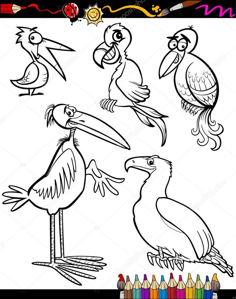 dibujos aves para colorear libro — Vector de stock © izakowski #36605881