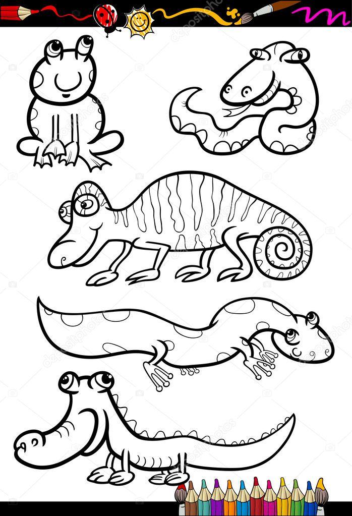 Imágenes: batracios para colorear   animales de la historieta fijada ...