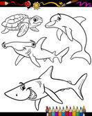 Fotografie moře života zvířata kreslená omalovánky