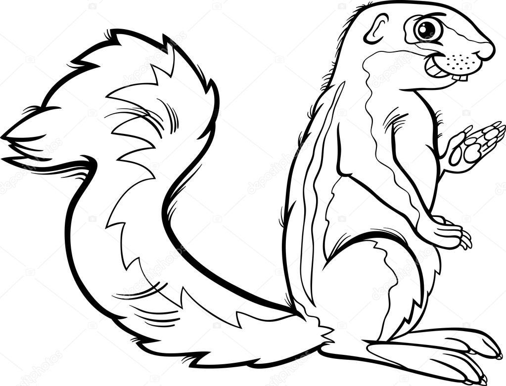 Página para colorear de Xerus animales de dibujos animados — Vector ...
