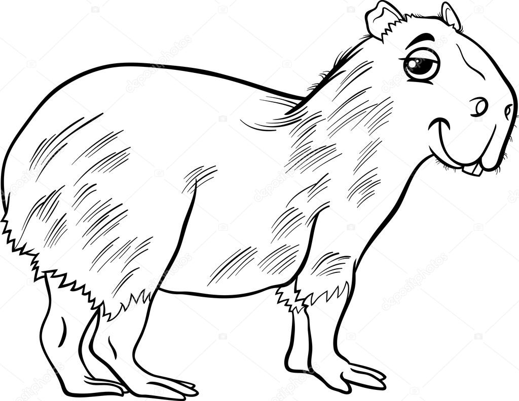 capybara animal cartoon coloring page — Stock Vector © izakowski ...