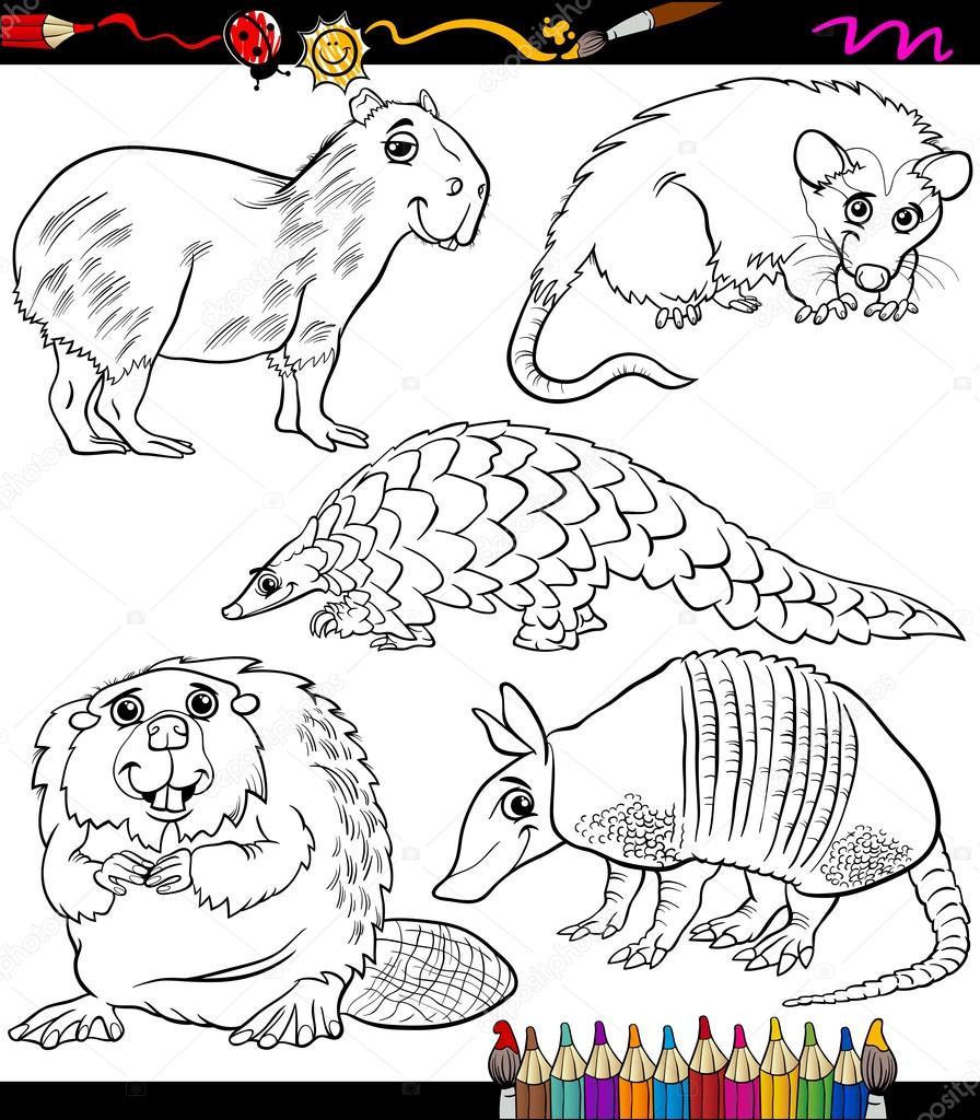 set de animales dibujos animados para colorear libro — Archivo ...