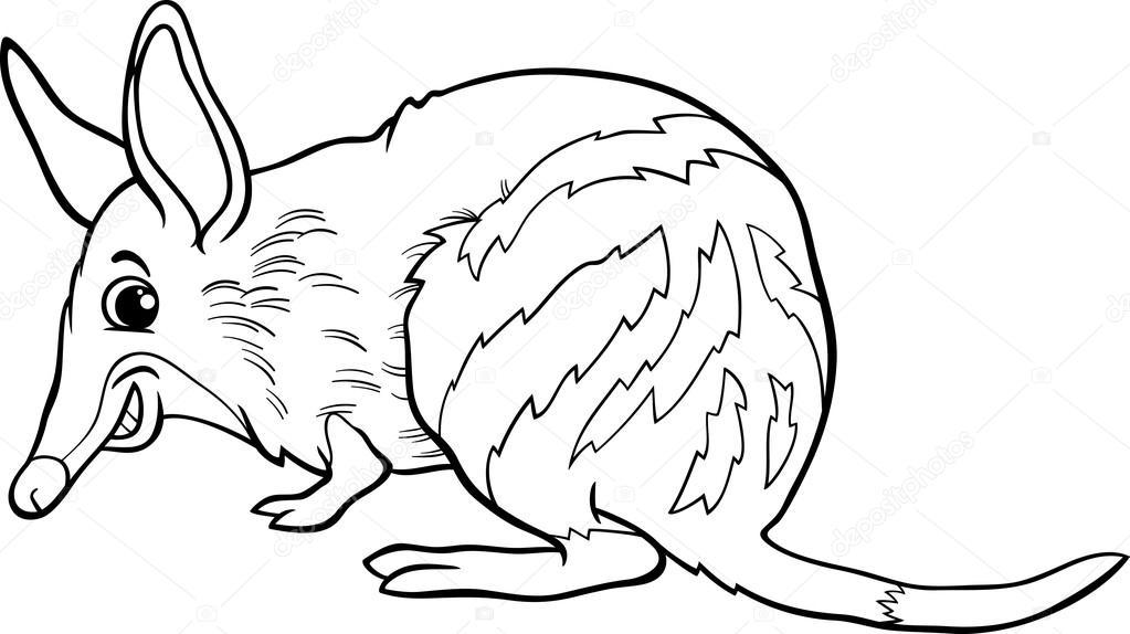 Bandicoot Hayvan çizgi Film Boyama Kitabı Stok Vektör Izakowski