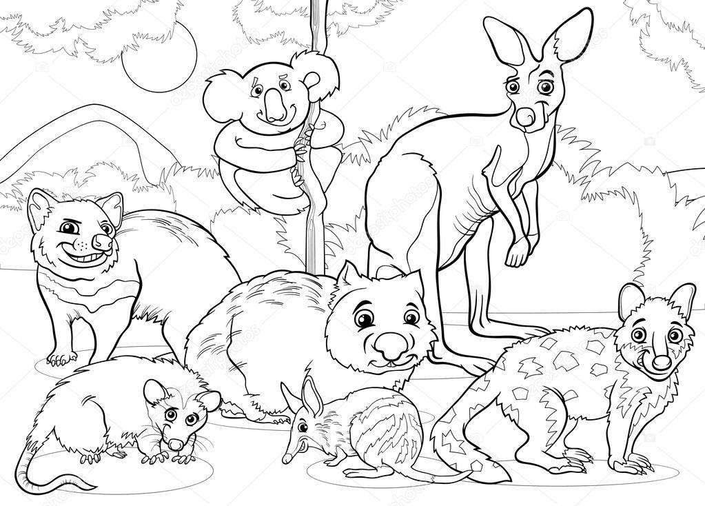 Dibujos Para Colorear De Animales Marsupiales Página Para