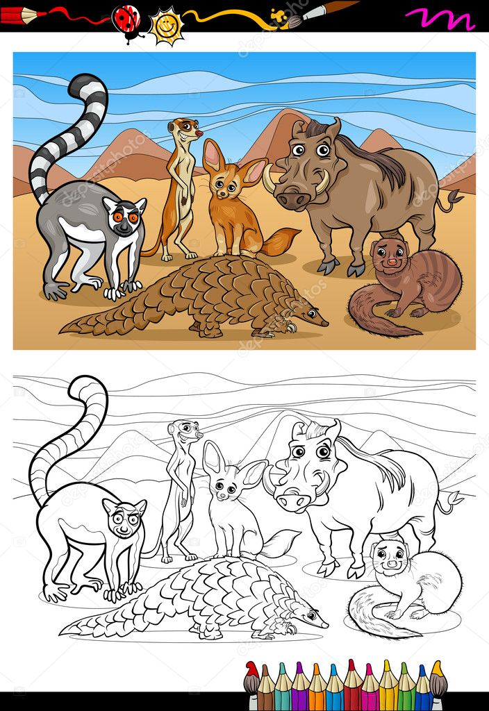 Fotos: mamiferos para niños | libro para colorear de dibujos ...