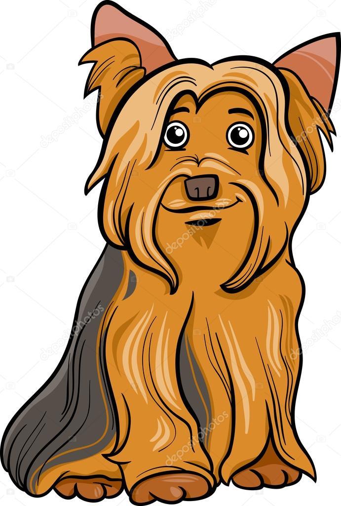 Dibujos Dibujo Yorkshire Ilustración De Dibujos Animados De Perro