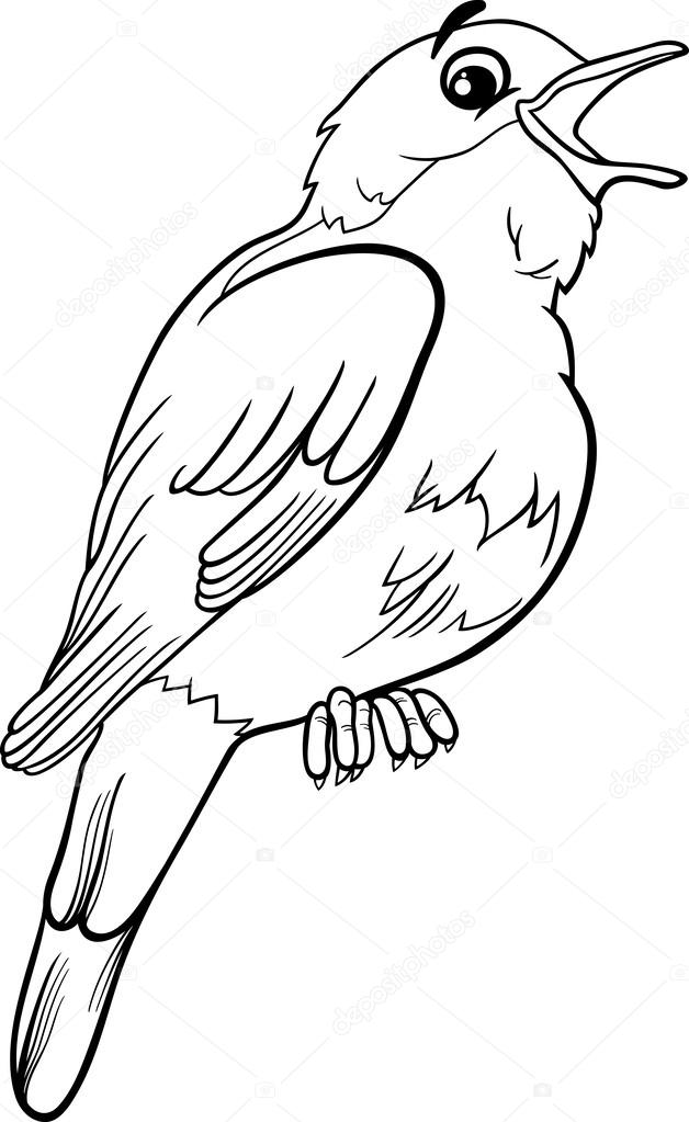 Black And White Cartoon Illustration Of Funny Nightingale Bird Animal For  Coloring Book U2014 Vector By Izakowski