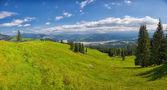 letní krajina v horách ceahlau