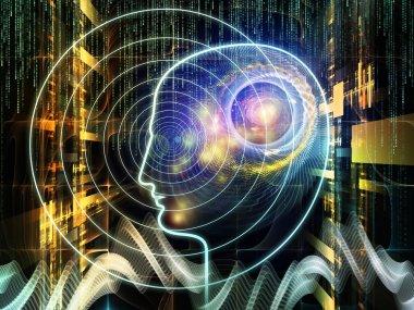 Toward Digital Consciousness