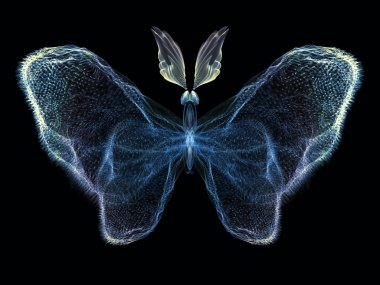 Illusion of Butterfly