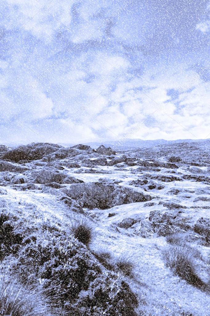 Ruin in irish winter christmas landscape