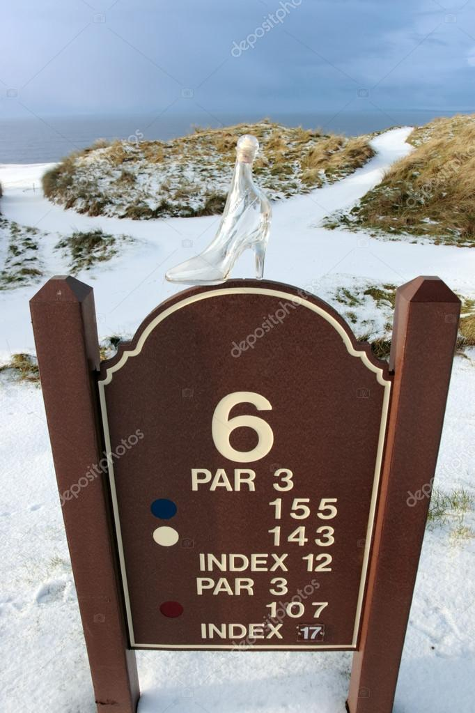 Number 6 hole marker sign with glass slipper