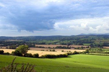 beautiful lush Irish farmland