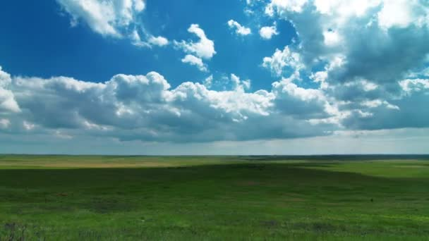 Pasture under cloudy sky