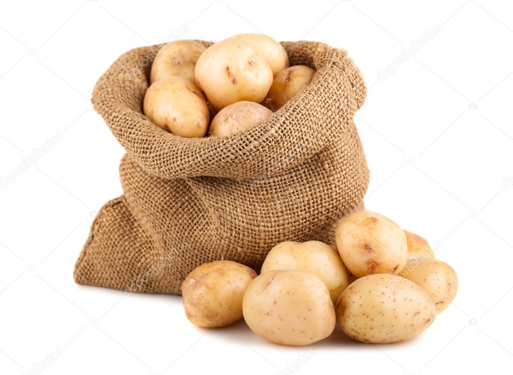 how to grow potatoes in a potato sack