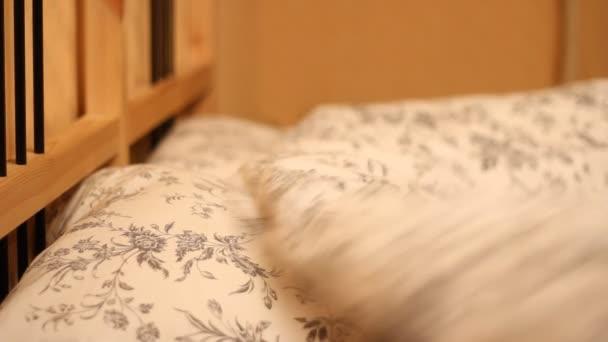 az ágyában alszik az ember