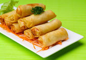 Spring Roll on background