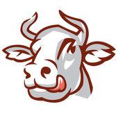 vedoucí bílé krávy