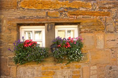 Tiny Scottish windows with flowers