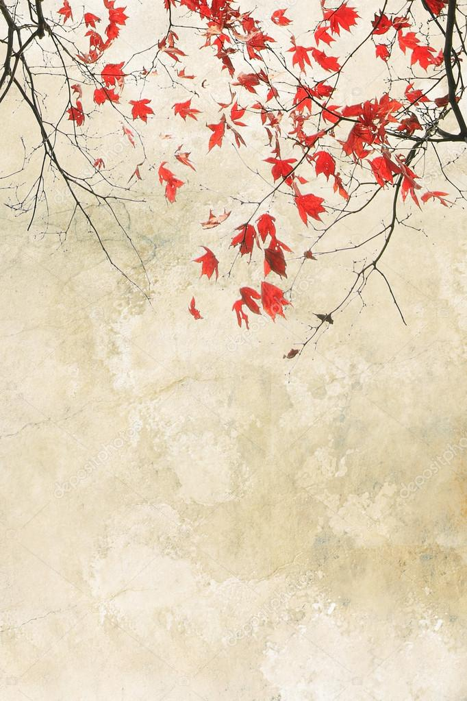 Beautiful red maple grungy background