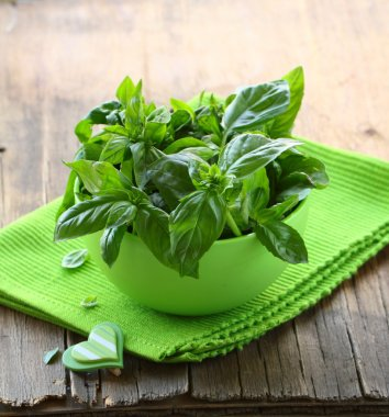 Fresh green basil on a wooden table